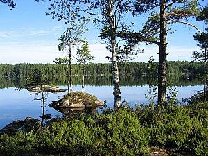 see-in-schweden-sxc-600x450